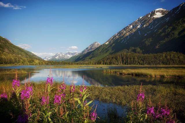 alaska-spring-water